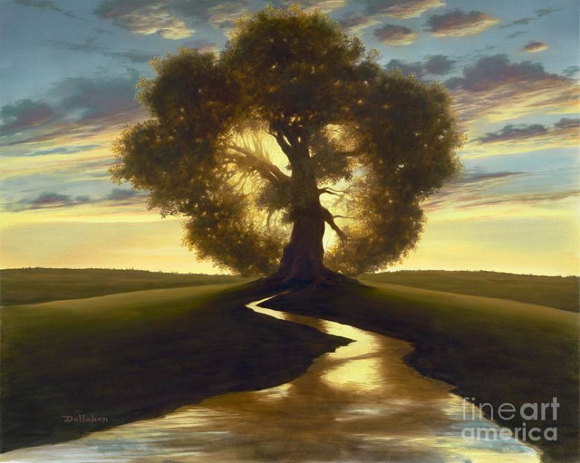 tree-of-life-dan-dollahon